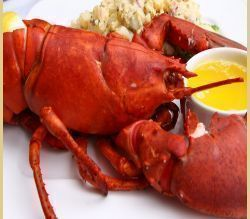Freshly steamed lobster are a true delicacy for any seafood lover