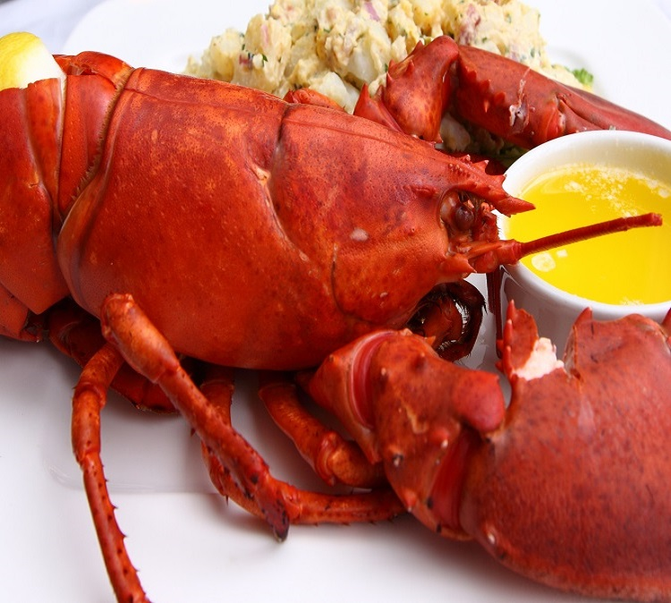 (5) 1-1.25 Lb Whole Maine Lobsters Steamed ☐ (5) Maine Lobster Bibs ☐ (1) Butter Warmer